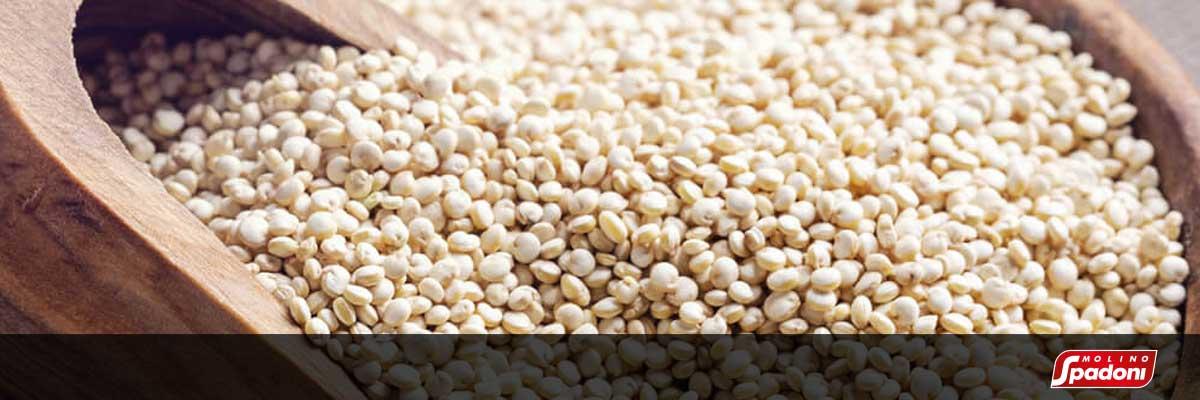 Pasta senza glutine con Quinoa | Casa Spadoni
